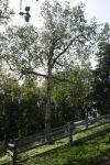 о. Анзер, Голгофо-Распятский скит